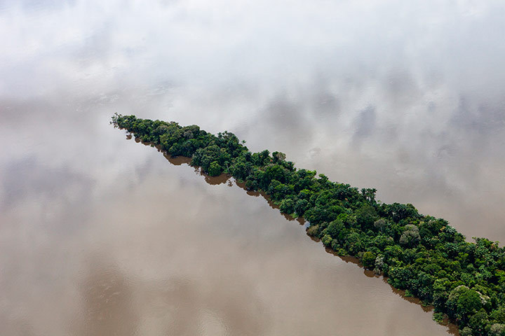 aconeyisland:  Daniel Beltra, Brazil 3, 2012. Aerial view south of Santarém and along the road BR163 of the rainforest in the Tapajós River