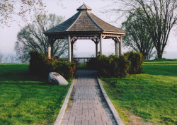 21vines:  Gazebo (by withoutmethod)