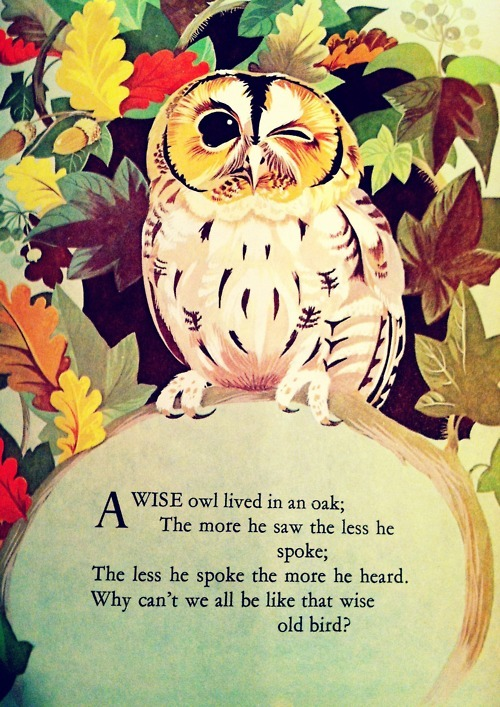 Amen, wise old Owl