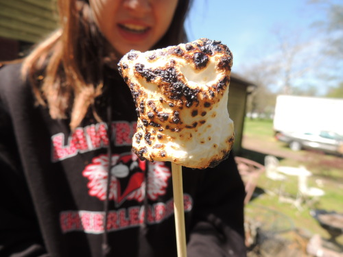 tbh-awkward:  obeylittlethings:  burnt marshmallow c:  this had like 300 notes not too long ago.. wot
