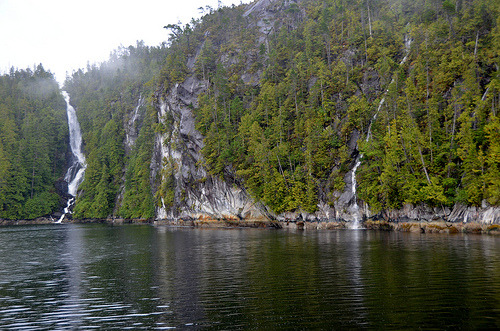 Great Bear Rainforest, British Columbia
