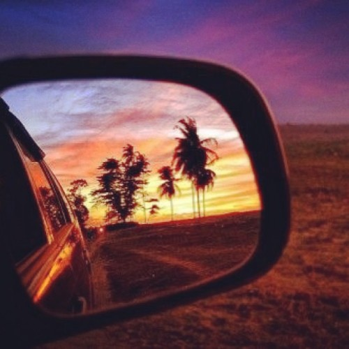 I wouldn't mind driving home everyday seeing this in my mirror :) #amazing #view #sky #palms #trees #sunset #nature #horizon #tbt