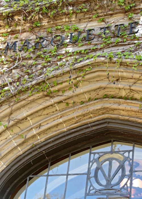 Ivy returns to Marquette Hall at Marquette University.