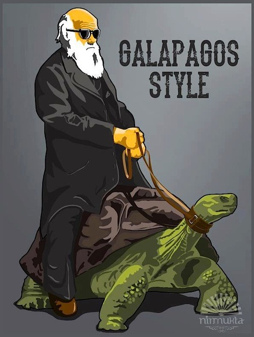 eat-a-baby:  galapagos-style  hahah love it! Happy Darwin Day everyone =]