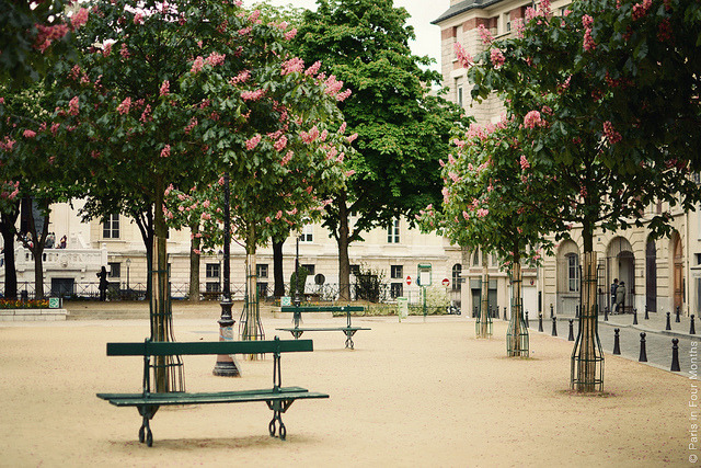 | ♕ |  Place Dauphine - spring in Paris  | by © Carin Olsson | via ysvoice