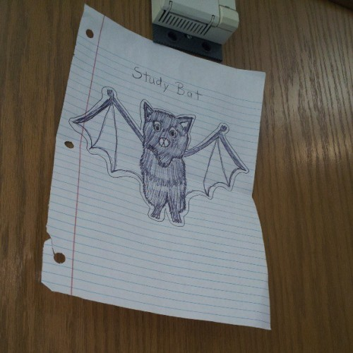 Study Bat will solve ALL the probs. #finals