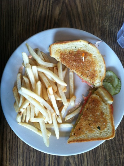 the lithia park sandwich  [green chile, cheddar, turkey]  the wild goose  ashland, oregon