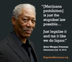 "weedporndaily:  ""[Marijuana prohibition] is just the stupidest law possible… Just legalize it and tax it like we do liquor.""  THANK YOU MR FREEMAN"