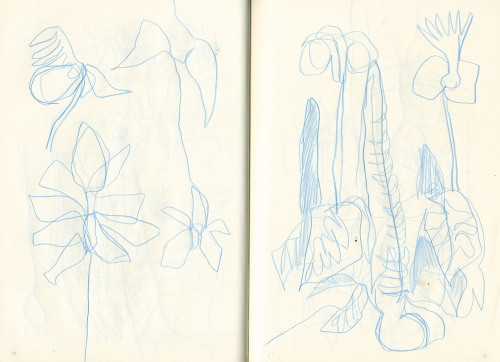Sketchbook: designs for new types of orchids.
