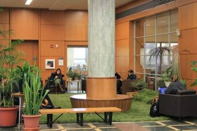 "Cornell brings nature inside libraries | The Ithaca Journal ""The grass is always greener, and now so are two of Cornell University's libraries.Students from the Department of Design and Environmental Analysis have installed small lawns in the lobbies of Olin and Mann libraries, as well as Duffield Hall and the Physical Sciences Building. The grass is surrounded by potted plants and chairs and, in at least one spot, a plastic caution sign warning students to beware of snakes."""