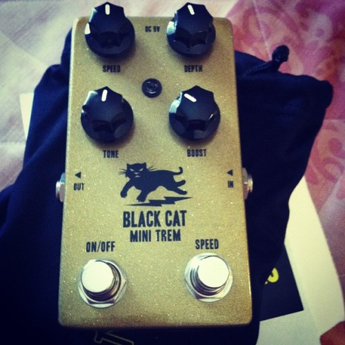I got myself a new toy in San Diego #blackcat #gearslut