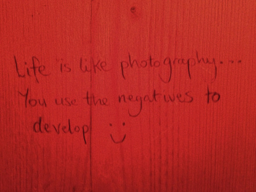 nevver:  Ladies Toilet Graffiti 2012