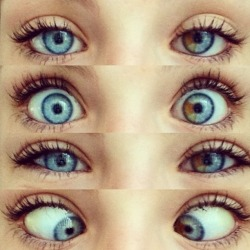 aloelita:  dynamicalwonders:  tropical-secret:  My Friends Eyes  ZOOOOOE  they are so pretty! omg!