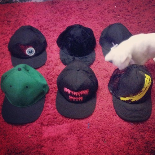 Which #cap should I wear tomorrow? Featuring #bensoncat. #flatcap #snapback #impendingdoom #flamingeyeball #eyeball #velvetunderground #banana #popart #xx #catsofinstagram #catstagram #caps #hats #hatstagram #menstyle #mensfashion