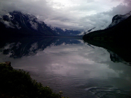 "Chilkoot Lake, Alaska Trent Gilliss, Online Editor With summer comes travel, and the SOF staff is on the move. The beauty of Kate having an iPhone is that she occasionally sends the staff photos she's taken from her travels. I find these shared gems give an insight into what she sees at a book event, an awards ceremony, or when she's on vacation. With a breathtaking backdrop like this, how can one not be inspired to come back and look for the story in other connected landscapes — which reminds me of our looking into Belgian bloembinder Daniel Ost and his sense that flowers and trees are not merely decorations but are a way for him to convey a sense of meaning through his work. From a piece in The New York Times Magazine:  ""…flowers are connected with spirituality. In the West we use them in a purely decorative way, but in Japan they work with the flower's soul to express not just beauty but ideas like death. … I've always wanted to show flowers in their optimum moment, but now that I'm older, I also want to explore the beauty of dying.""  (photo: Kate Moos)"