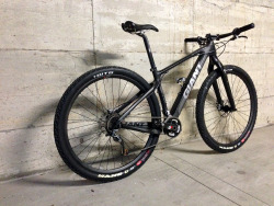 Baldon's Custom Giant XTC Composite 29""
