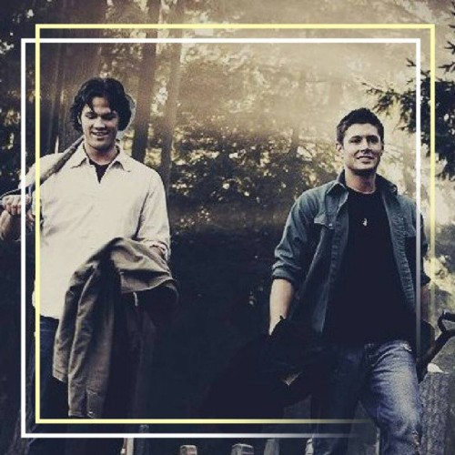 surrounded-by-supernatural:  »» #Winchesters