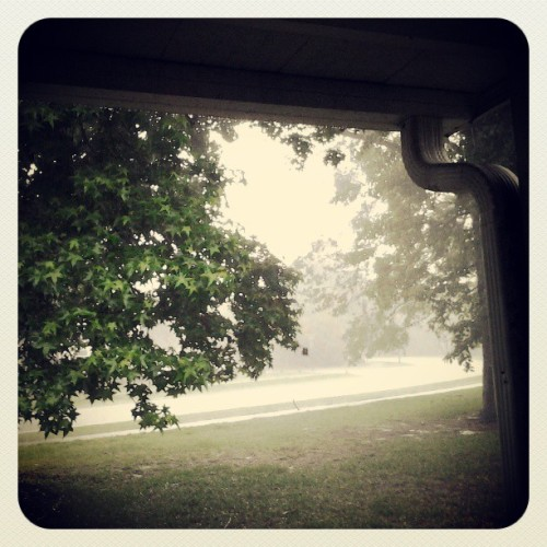 My #rainy day #sunday view