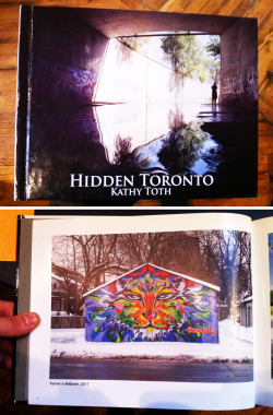 My cat garage mural made it into Hidden Toronto By: Kathy Toth A collection of photographs of Toronto Graffiti and Hidden Locations.For more info or to order your own copy check out http://cargocollective.com/hidden416/