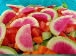 Rawfood ~ Colorfull, delicious & healthy