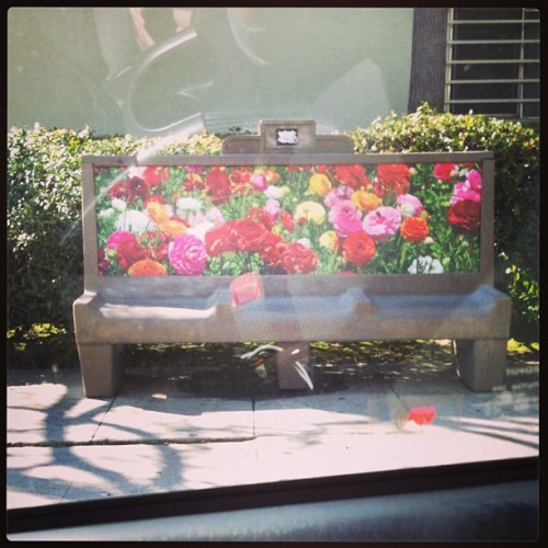 What a pretty bus bench.