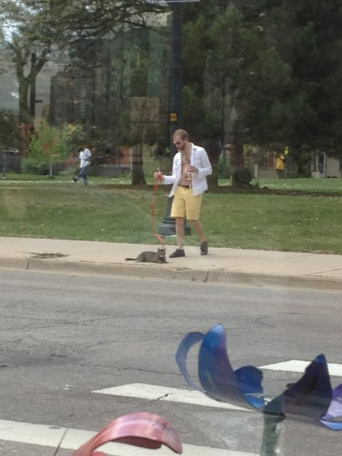 gay-men:  Guy holding Martini while walking his cat.