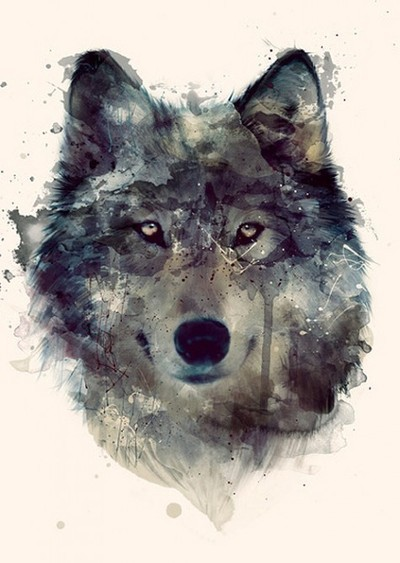 czarne-oczy:  Watercolour Wolf | via Tumblr on We Heart It - http://weheartit.com/entry/60633782/via/SIXSHADES Hearted from: http://jessicasmind.tumblr.com/post/49705982587