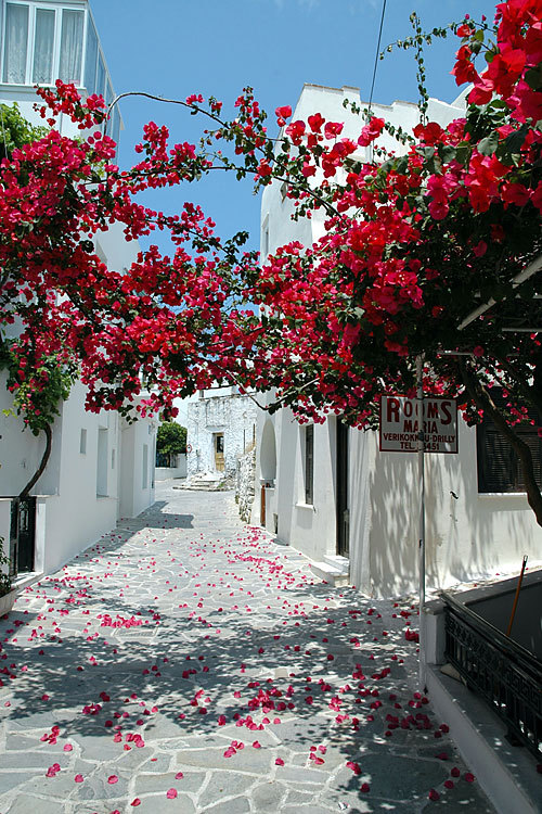 santoriniblog:  Naxos By images of greece