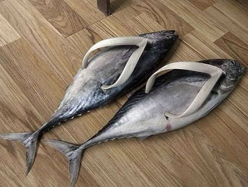 violentblowjobs:  fish flops
