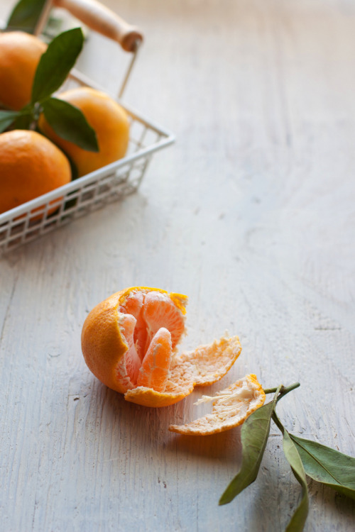 noperfectdayforbananafish:  tangerine (by lexi's world)
