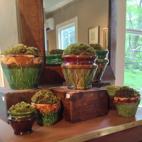 #Collection of #chic #antique #gardenpots with #moss at #privethouse. #nwct #newengland #shopping #garden #home