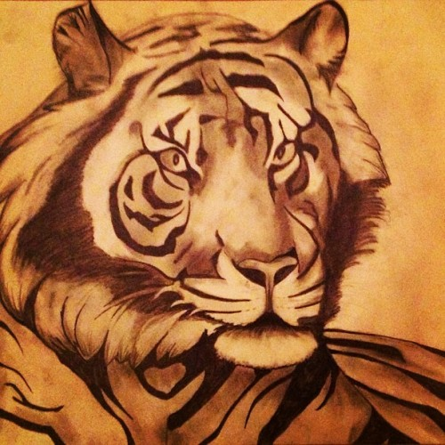 #tiger #siberian #animal #nature #drawing #illustration #sketch #art