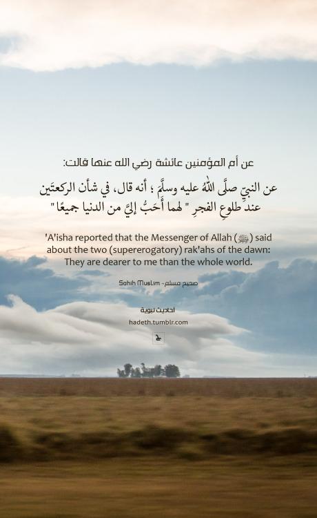 The Funniest Quran Verse (Crazy Quran Verses: 2) - YouTube