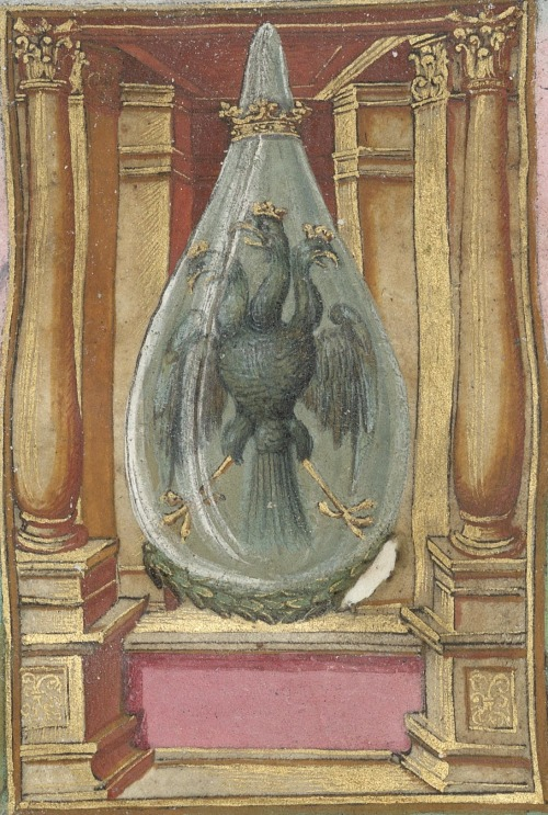 A three headed eagle - an edition of the Splendor Solis