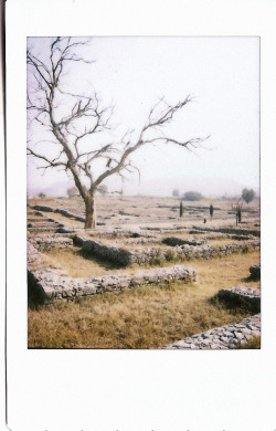 From the beginning of my trip- we went to the site of Taxila. It was inhabited by ancient Greek, Persian and Hindu civilizations. It's honestly a maze of ruins with a few temples. The weather was quite fogged over and bright which is why it looks a little strange and I honestly wish more money went into uncovering stuff here because there's a lot of mixed history here.