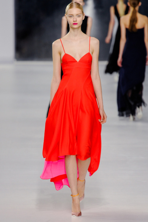 vogue-is-viral:   Christian Dior, Resort 2014  wow
