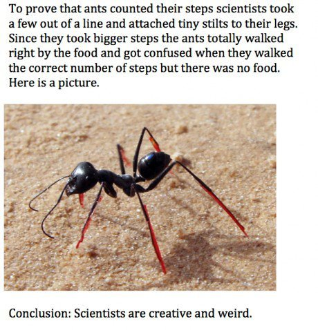tony-the-intelligent-goon:  ashiibaka:  Science.  I can't tell what my favorite part is, but it's either scientists wasting budget and time to see if ants count their steps the idea to put ants on stilts there had to be a guy who made ant stilts and put them on the ants confused ants