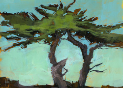 Cypresses10.5 x 7.5 inches2013