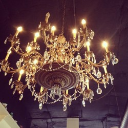 Mother was full of gorgeous chandeliers….so beautiful and twinkly.