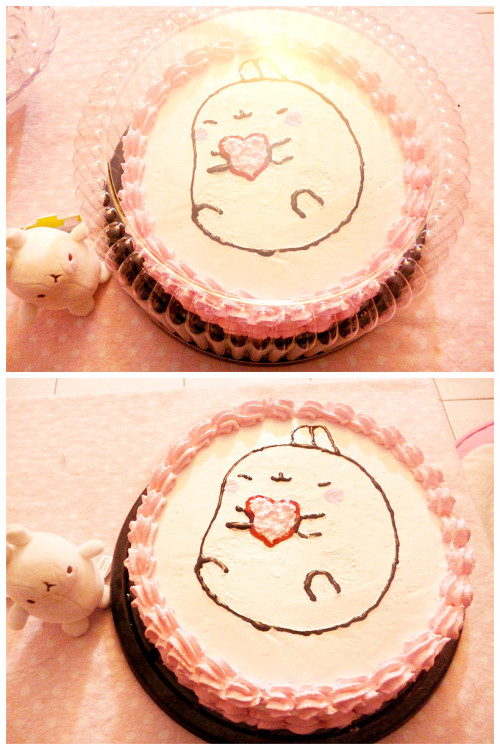 fayhime:  For my birthday, my friends made me this cake of molang ♥ ♥ ♥i just love it! and it was delicious!