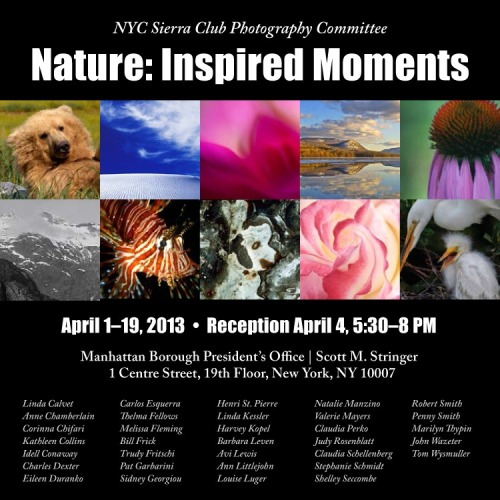 New Photo Exhibition at My Office: Celebrate our planet's wild places! You're invited to experience Nature: Inspired Moments, photographs by The New York City Sierra Club Photography Committee. To view it, visit my office, 1 Center Street, 19th Floor, New York City, Monday, April 1 through Friday, April 19, 2013.