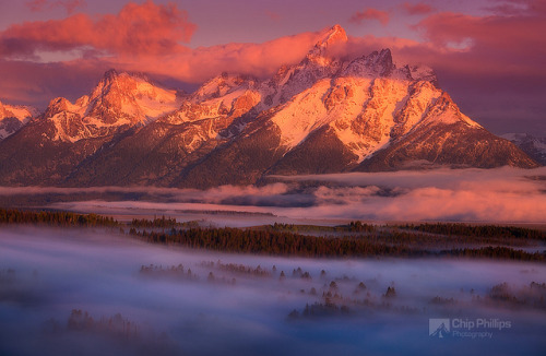 karjars:  Foggy Sunrise Grand Tetons by Chip Phillips on Flickr.