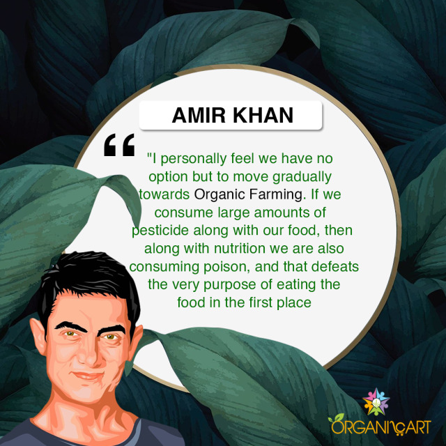 Lets see what Mr. Perfectionist has to say about 🌿organic and vegetarian food. #organic#aamirkhan#bollywood#bollywoodcelebrity#switchtorganic#choosevegetarian#mrperfectonist#organicfood#vegan#wholesome#food#organicart