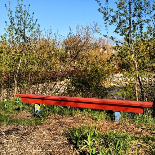 red bench part ii #nofilterneeded #spring #nature #urban #milwaukee #milwaukeemusings  (at Caesar's Park)