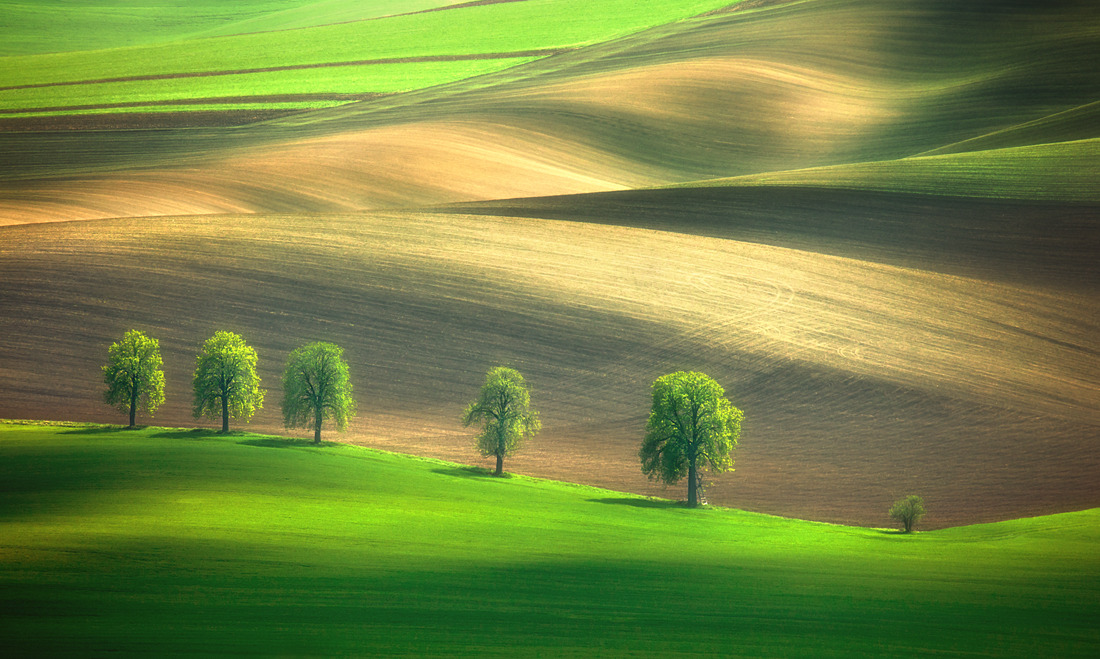 Shadows on the fields…. by Krzysztof Browko