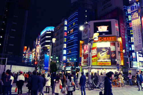 japanesecontent:  Shinjuku at Night (by plenty of flour)
