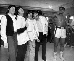 lomographicsociety:  Muhammad Ali, Towering Over, Glaringa at, and Punching The Beatles Ali looks serious, George thinks the boxer is fooling around, Ringo looks stunned, John appears in ecstasy, and Paul looks hurt. Whatever was happening that moment, it sure made an interesting photo of these popular people hanging out together!