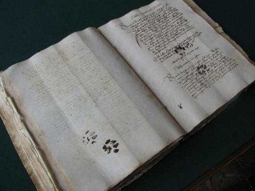 Miau. (Medieval cat paw prints on a 15th century manuscript)