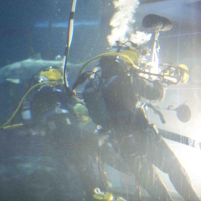 Underwater window cleaning: just like regular window cleaning, except you're wearing scuba gear, & there are sharks.