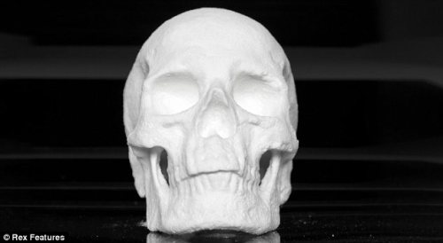 Dutch artist creates life-size human skull out of COCAINEA Dutch artist has fashioned a human skull out of cocaine by moulding the street-sourced class A drug mixed with gelatin. The piece, entitled Ecce Animal, is the work of mysterious artist Diddo who says he was commissioned to make the artwork, although is prohibited from disclosing further details. Diddo says he did not personally test the cocaine but employed a laboratory to analyse the drug bought from a street dealer. They found it was between 15 per cent to 20 per cent pure and had been cut with caffeine, paracetamol and sugar.  (Source: Daily Mail)